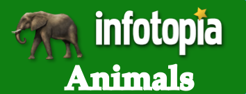 Check out all the Infotopia resources on animals here.