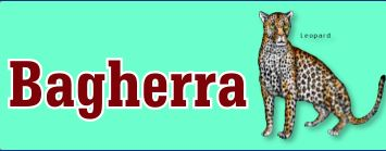 Bagheera is an educational site about endangered species and the efforts to save them.