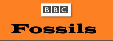 The BBC has a very informative site on fossils.