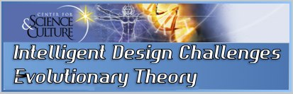 intelligent design evolutionary theory theistic evolutionists