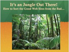 It's a Jungle Out There! How to Distinguish Good Web Sites from the Bad