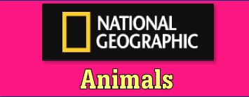 National Geographic includes animal facts, photos, videos, and information about animal conservation.  They do require users to register, but it is free.