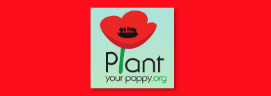 Plant a virtual poppy on remembrance day