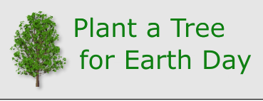 Plant a Tree, Start a Garden, or Have a Spring Clean Up for Earth Day