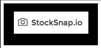 Stocksnap.io includes an amazing selection of free images under the creative commons license.